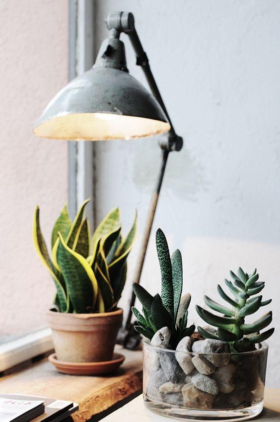 lampadina fai da te creativa 10