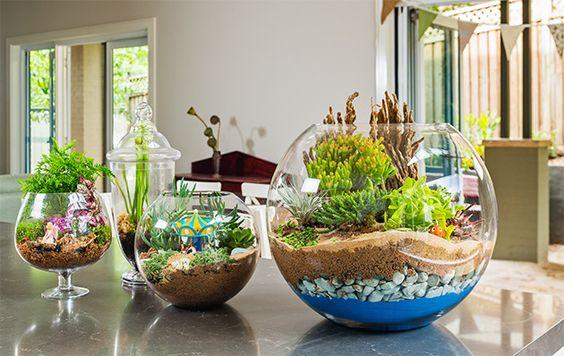 Des mini jardins fait maison