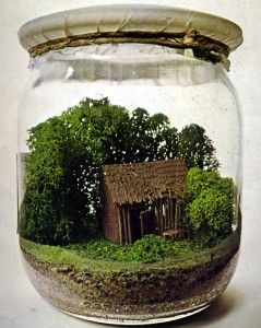 vaso mini giardino 17