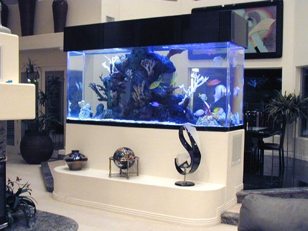 Diviser une pièce avec un aquarium