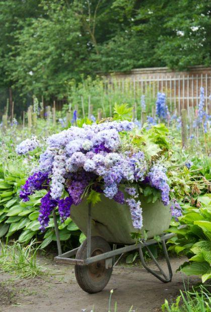 carriola con fiori 15