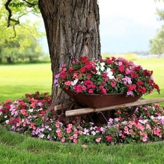 carriola con fiori 9