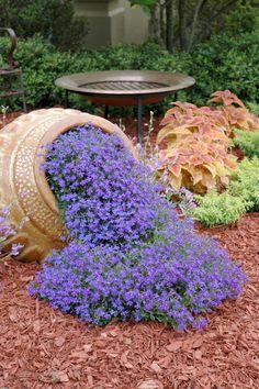 vase originale dans le jardin