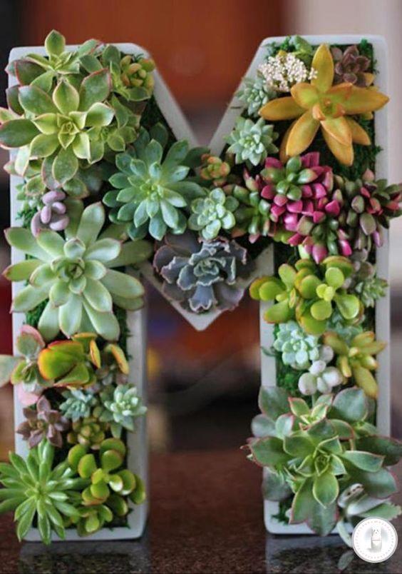D corations avec les plantes grasses 20 superbes id es - Decorer terras avec plantes ...