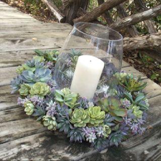 decorazione creativa con piante grasse 13