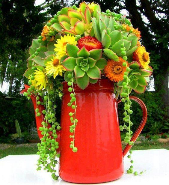 decorazione creativa con piante grasse 16