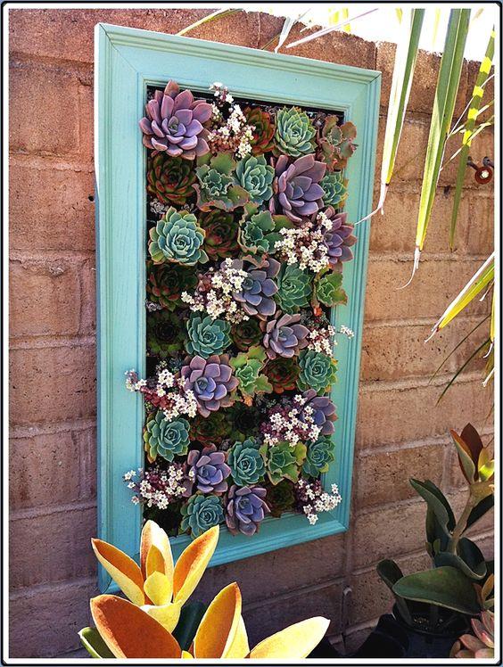 decorazione creativa con piante grasse 6