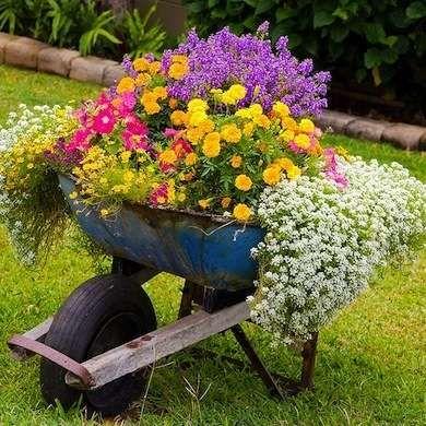 idee decorazioni piante 14