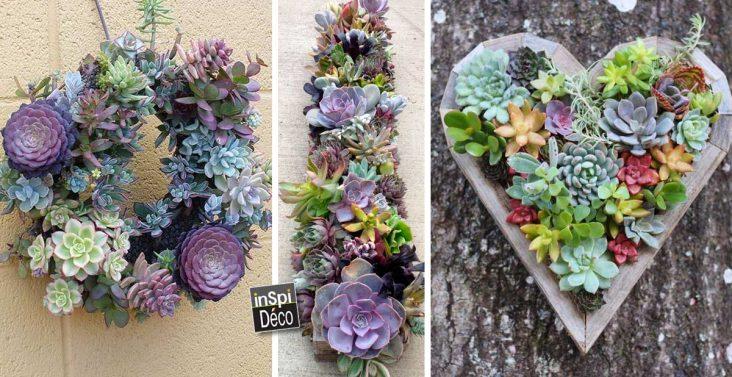 inspi-deco-avec-plantes-grasses