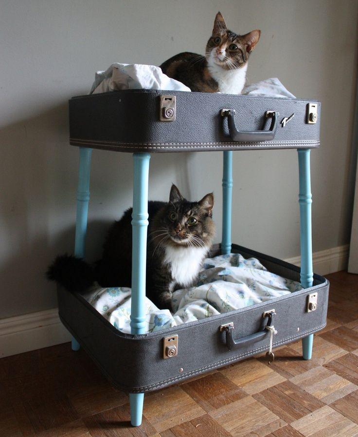 cuccia valigia 1