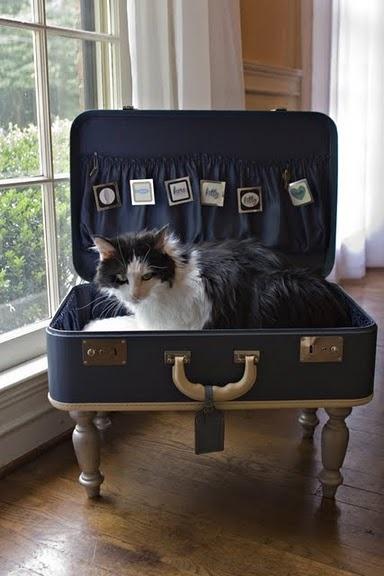Une valise niche