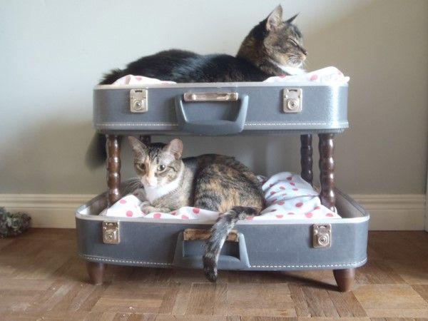 cuccia valigia 3