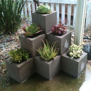 les blocs de ciment fleurissent