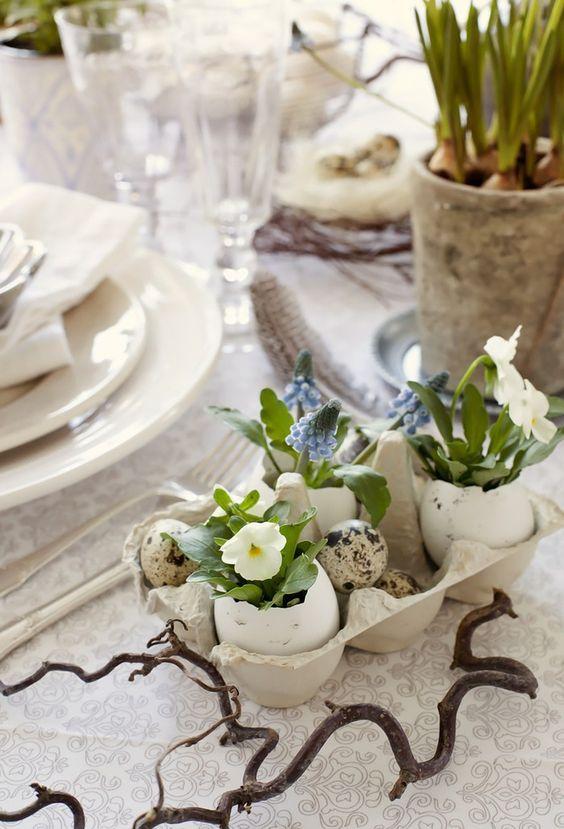 riciclare gusci delle uova 13
