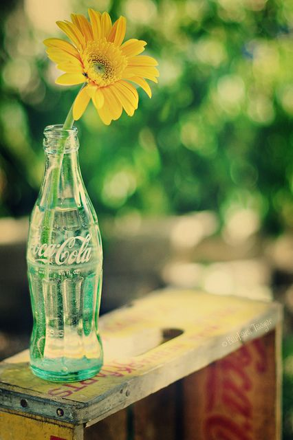 riciclo bottiglie coca cola 19