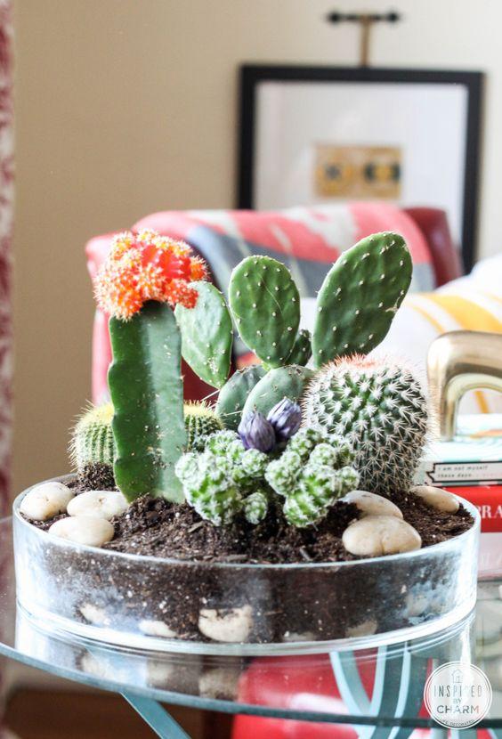 decorare con dei cactus 12