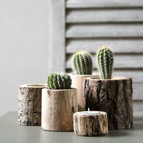 Décorer la maison avec des petits cactus idée n 2 decorare con dei cactus 2