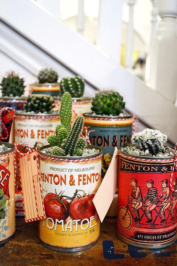 decorare con dei cactus 6