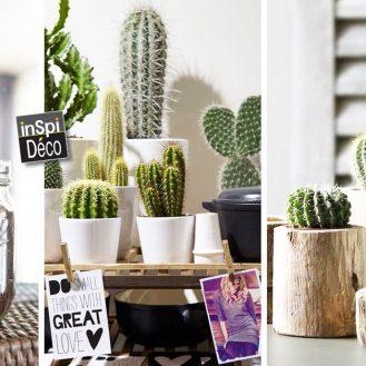 decorer-avec-des-cactus