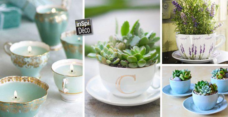 des-tasses-avec-des-plantes