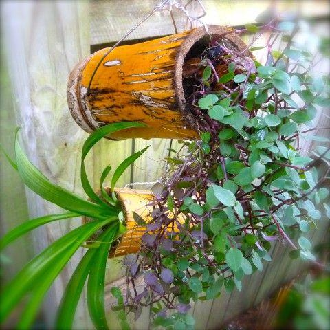 déco originales avec du bambou