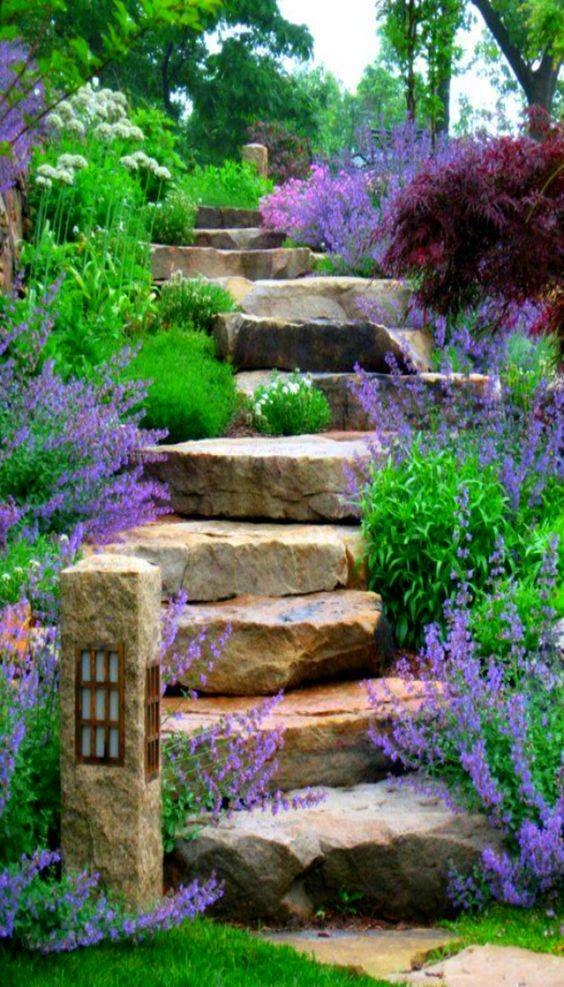 scale con i fiori 2