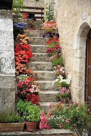 scale con i fiori 4