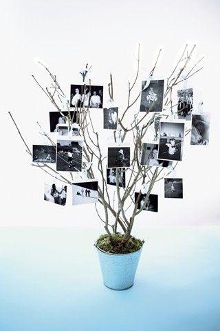 esporre foto creativamente a casa 16