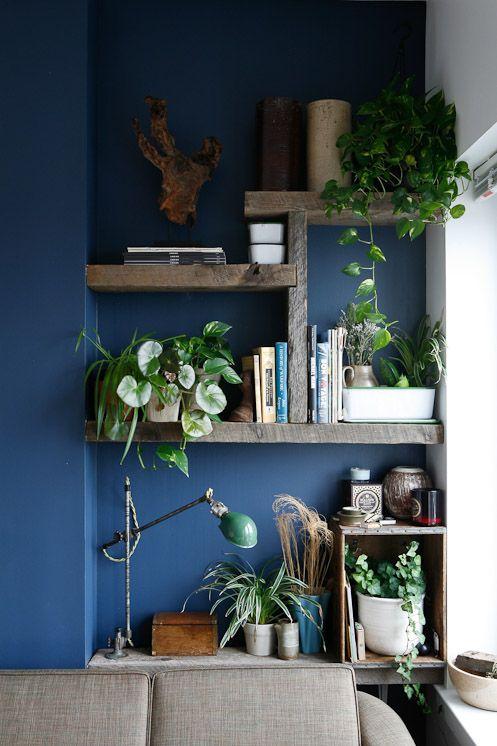 decorazione-mensole-piante-14