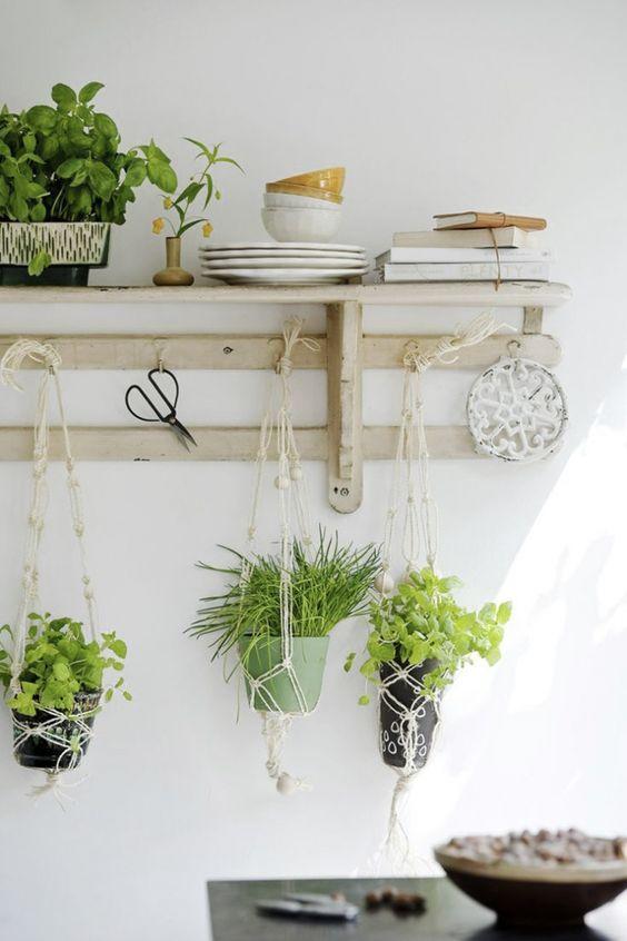 decorazione-mensole-piante-2