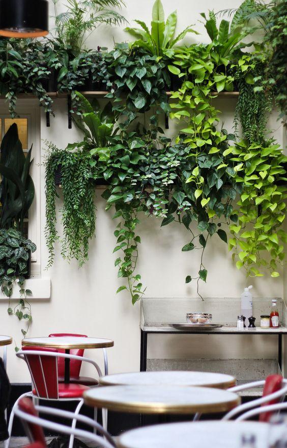 decorazione-mensole-piante-4