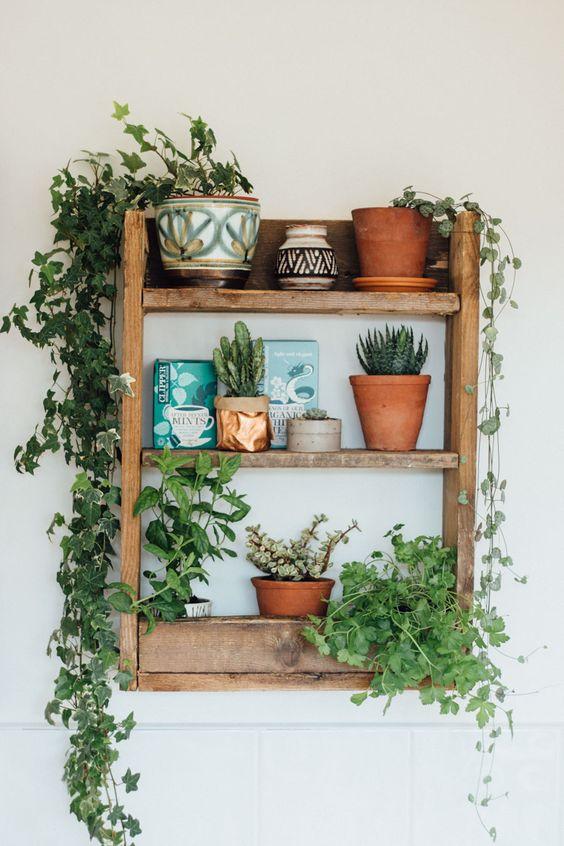 decorazione-mensole-piante-5