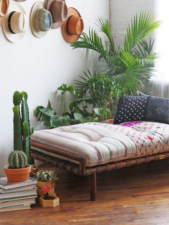 angolo-piante-casa-11