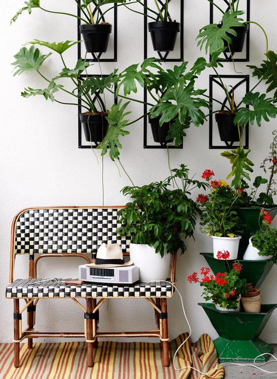 angolo-piante-casa-16