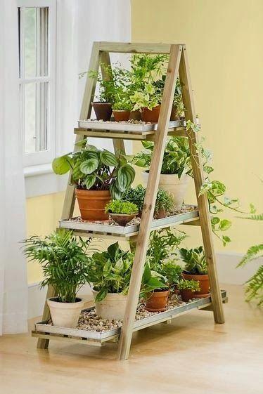 angolo-piante-casa-19