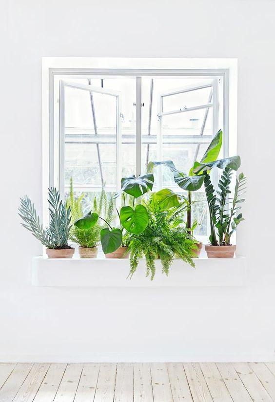 Un coin plantes vertes dans votre int rieur voici 20 id es - Decorer son interieur ...