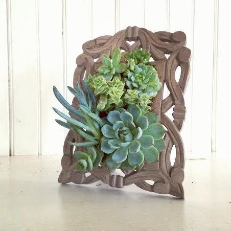 Un cadre original avec des plantes grasses 20 id es tutoriel vid o - Porta piante fai da te ...