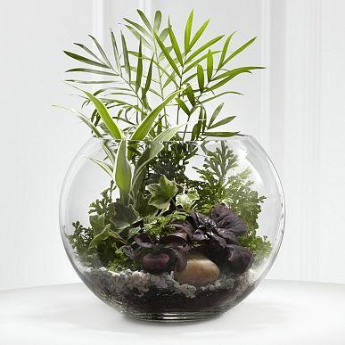 Un mini terrarium fait maison