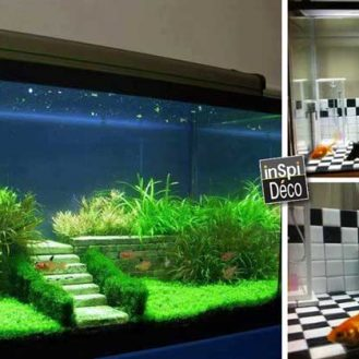 deco-originale-aquarium