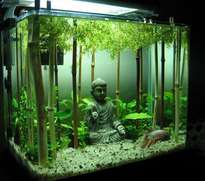 Декор в аквариум как сделать
