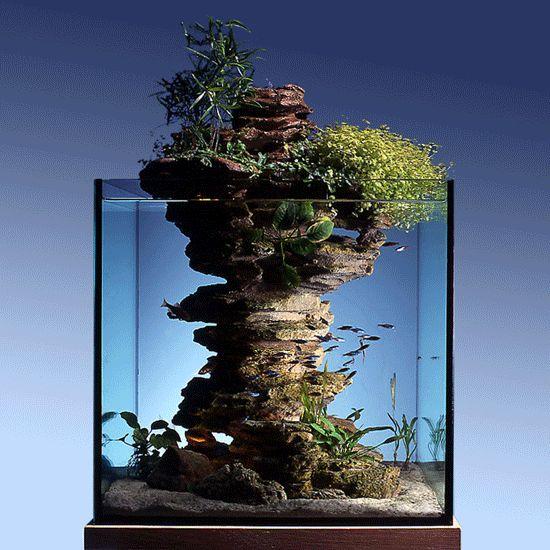 decorazioni-creative-piccolo-acquario-1