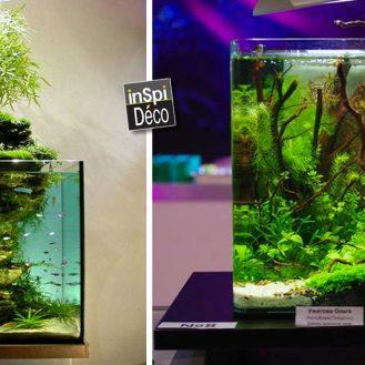 idees-pour-decorer-un-petit-aquarium