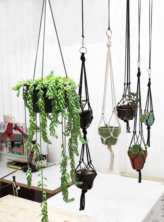 decorazioni originale piante 11