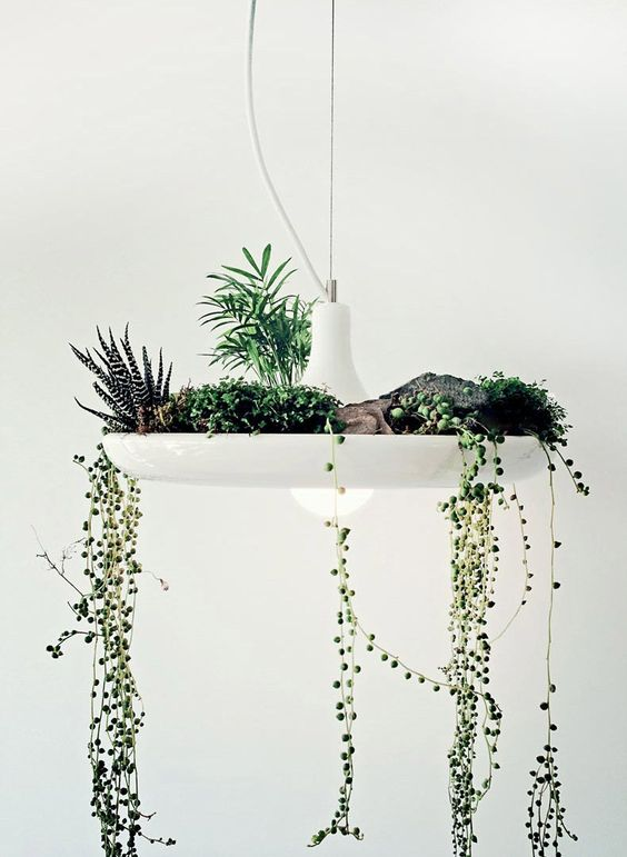 Un jardin suspendu