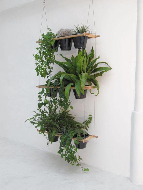 decorazioni originale piante 8