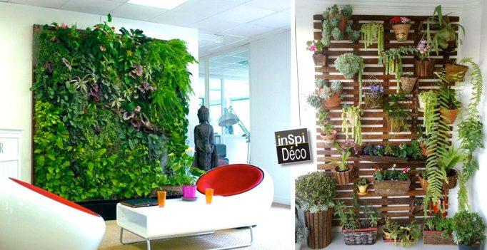 vegetaliser un mur exterieur gallery of kits mur vgtal extrieur vertiss corner xxcm avec. Black Bedroom Furniture Sets. Home Design Ideas