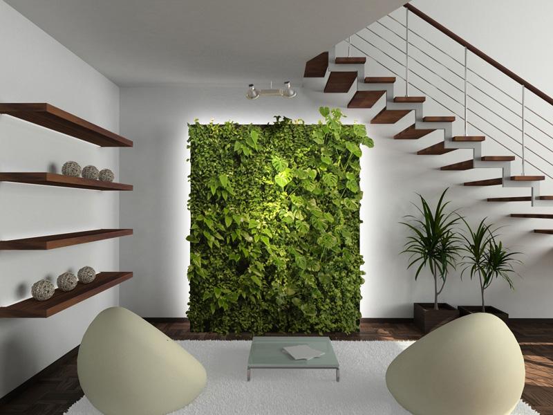 parete vegetale fai da te 6