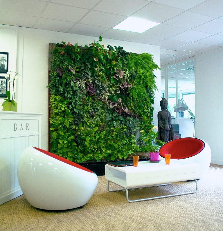 Зеленая стена в интерьере своими руками 62