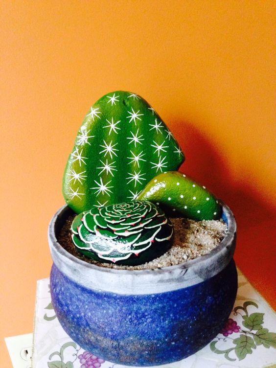sassi cactus 13