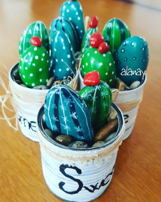 sassi cactus 18